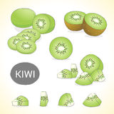 Set of kiwi fruit in various styles vector format stock illustration