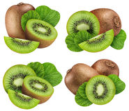 Set of kiwis isolated on white background. With clipping path stock images