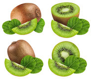 Set of kiwis isolated on white background. With clipping path royalty free stock photo