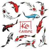 Set of Koi carps, japanese fish. colored korean animals. Engraved hand drawn line art Vintage tattoo monochrome sketch stock illustration