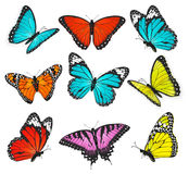 Set kolorowi motyle wektorowi Obrazy Royalty Free