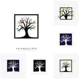 Set Kolorowy Drzewny logo projekta szablon Luksusowi Drzewni logo pojęcia Natura logo pojęcia Wektorowi ilustracja wektor