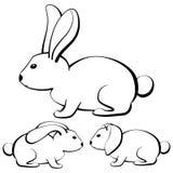 Set kontur kreskówki króliki z różnym typ ucho Fotografia Stock