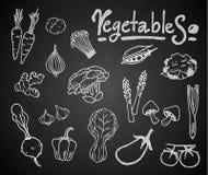 Set kredowi warzywa na blackboard Zdjęcie Royalty Free