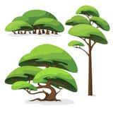 Set kreskówki stylizowany drzewo krzak i obrazy stock