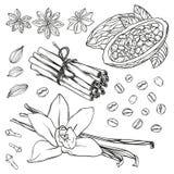 Set kuchenne pikantność Wanilia, cynamon, cloves, gwiazdowy anyż, cacao fasola, kawowe fasole i kardamon, ilustracji