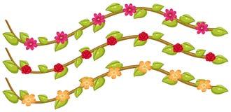 Set kwiatów winogrady royalty ilustracja