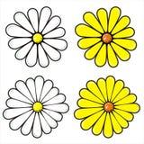 Set kwiaty Fotografia Stock