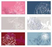 Set kwiaty Zdjęcia Royalty Free