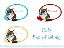 Set of labels Stock Photography