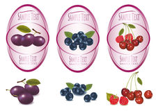 Set of labels with berries and fruit. Royalty Free Stock Photos