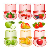 Set of labels with berries and fruit. Stock Photos