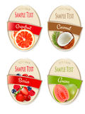 Set of labels of berries and fruit. Stock Image