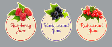 Set of labels for fruit jam. Berries icon set. Royalty Free Stock Photography