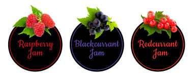 Set of labels for fruit jam. Berries icon set. Royalty Free Stock Photos