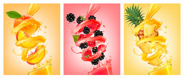 Set of labels of of fruit in juice splashes. Peach, strawberry, blackberry, pineapple. Vector Stock Photo