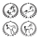Set with labels of horses Royalty Free Stock Photography
