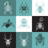 Set of labels with the image of arachnids Royalty Free Stock Photography