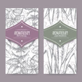 Set of 2 labels with lemongrass and patchouli Stock Photos