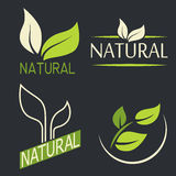 Set of labels, logos with text. Natural, eco food. Organic food Royalty Free Stock Images