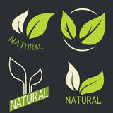Set of labels, logos with text. Natural, eco food. Organic food Royalty Free Stock Photos