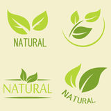 Set of labels, logos with text. Natural, eco food. Organic food. Badges in vector cosmetic, food. Vector logos. Natural logos with leaves Royalty Free Stock Image