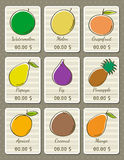 Set of labels with organic fruits, vector Royalty Free Stock Photography