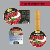 A set of labels for raspberry. Isolated image. vector illustration