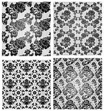Set lace background Royalty Free Stock Images