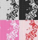 Set of Lace seamless patterns with butterflies Royalty Free Stock Images