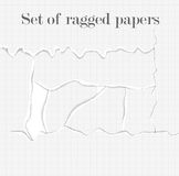 Set of lacerated papers. Collection of torn pages. Ragged papers background Stock Photo