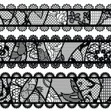 Set of lacy vintage trims. Royalty Free Stock Image