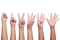 set of lady hand signs isolated on white Royalty Free Stock Images