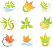 Set of laef logo elements. Vector set of laef logo elements royalty free illustration