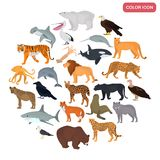 Set of land and water predators color flat icons Royalty Free Stock Images
