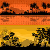 Set Landscapes, Palms and Plants Royalty Free Stock Photography