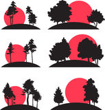 Set of landscapes with trees and risisng sun Royalty Free Stock Image
