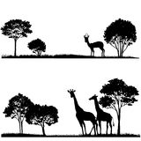 Set of landscapes with trees and wild animals. Set of african landscapes and wild animals,exotic trees and giraffes, hand drawn vector design elements Stock Photos