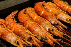 Set of large red shrimps Argentinean whole sea delicacies with head group of delicacies on the grill stock image