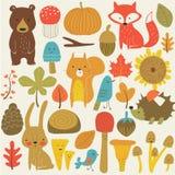 Set lasowi zwierzęta Zdjęcie Stock