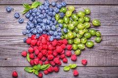 Set lato jagody - malinki, czarne jagody, agresty Zdjęcia Stock