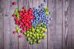 Set lato jagody - malinki, czarne jagody, agresty Obraz Stock