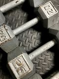 Barbells. A set of 20 LB iron barbells for working out at home or the gym Stock Image