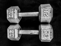 20 lb Barbells. A set of 20 LB iron barbells for working out at home or the gym Royalty Free Stock Images