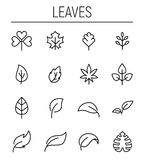 Set of leaf icons in modern thin line style. Stock Images
