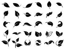 Set of leaf icons Stock Photography