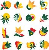Set of leaf logo elements. Vector set of leaf logo elements stock illustration
