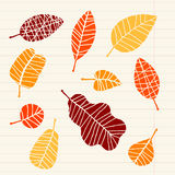 Set of leaf sketch for you design Royalty Free Stock Image