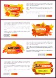 Set of Leaflets with Foliage Autumn Big Sale 2017 Stock Images