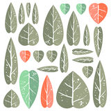 Set of leafs. Beautiful set of leafs for your design. Grouped by objects Stock Photos